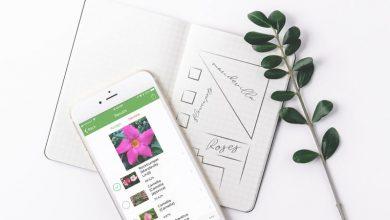 PlantSnap 1 390x220 - تطبيق PlantSnap للتعرّف على الزهور والنباتات من الصور باستخدام الذكاء الاصطناعي