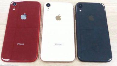 2 4 390x220 - تسريب صور جديدة تكشف أن آبل ستطلق جوال iPhone Xc بشريحتين وأربعة ألوان