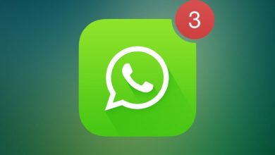 whatsapp bildirim sorunu 390x220 - بالصور.. تعرف على كيفية تخصيص نغمة تنبيه مميزة لكل من تتواصل معهم عبر واتساب